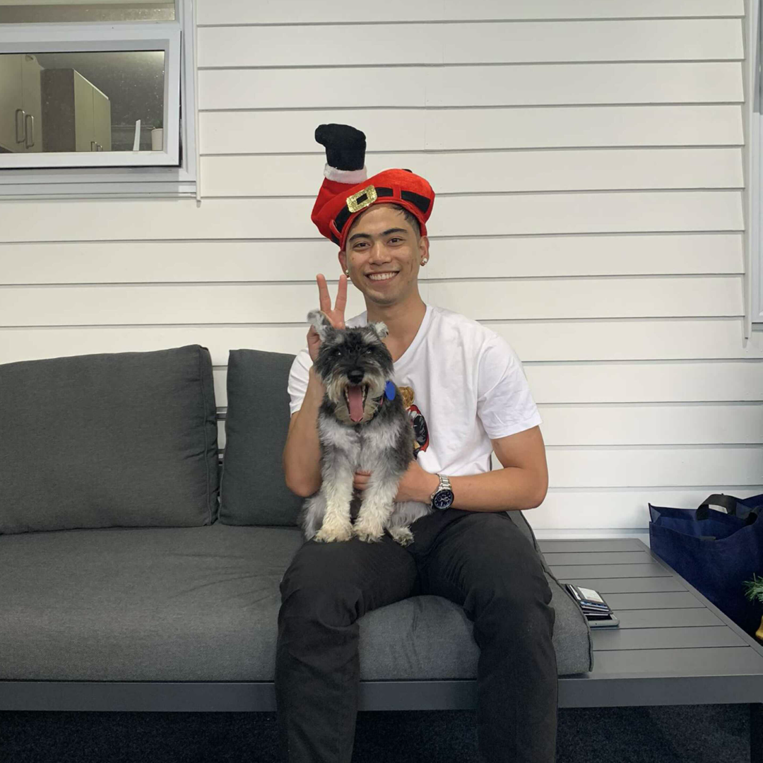 Earl from Tradify wearing a santa hat and holding a dog