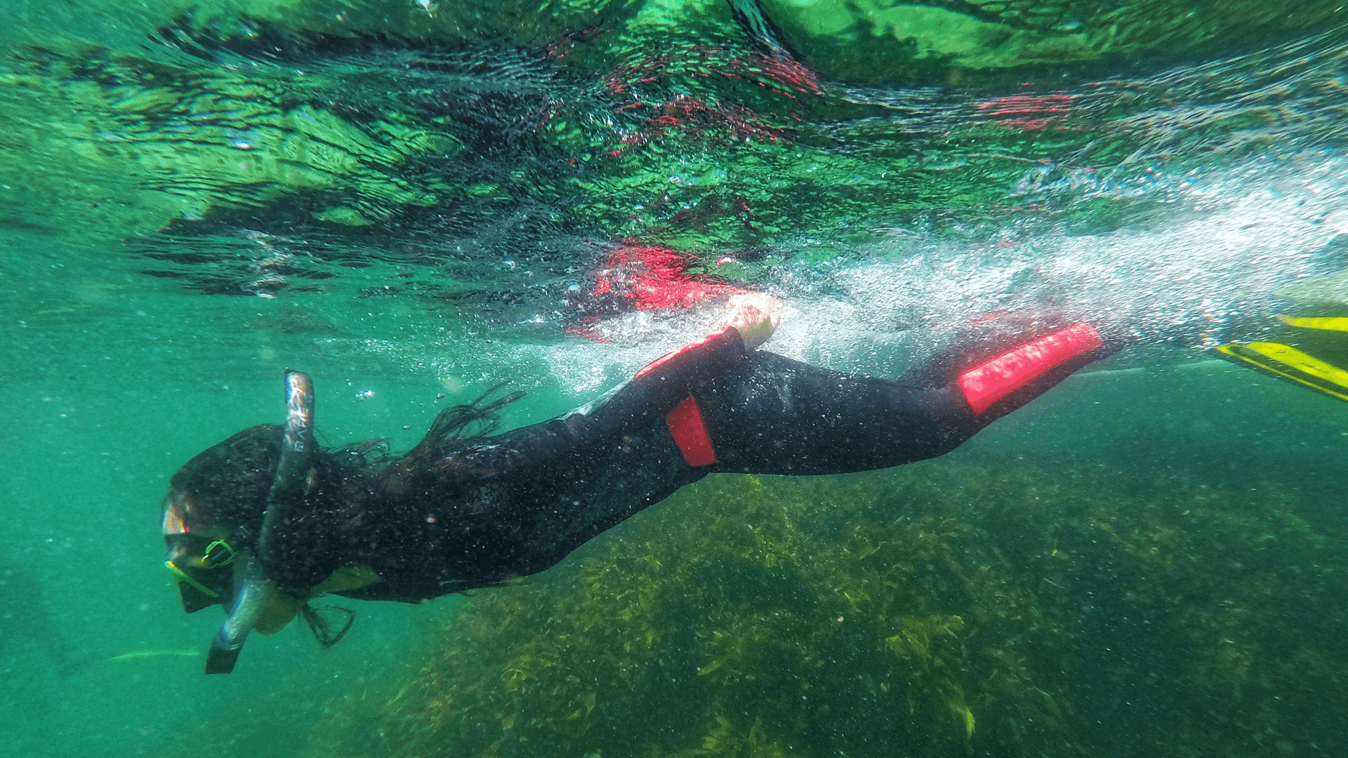 Mat_Amanda_amanda snorkelling in wetsuit in green water