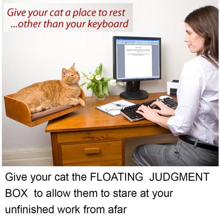 floating judgement box